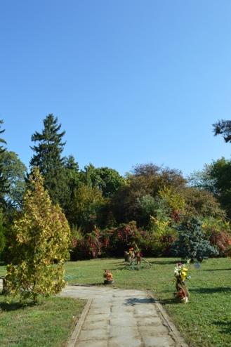 gradina botanica octombrie 2012 038