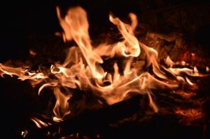 foc 056