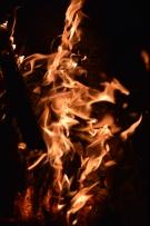 foc 058