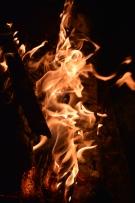 foc 059