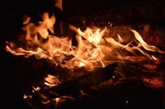 foc 061