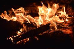 foc 065