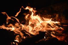 foc 066