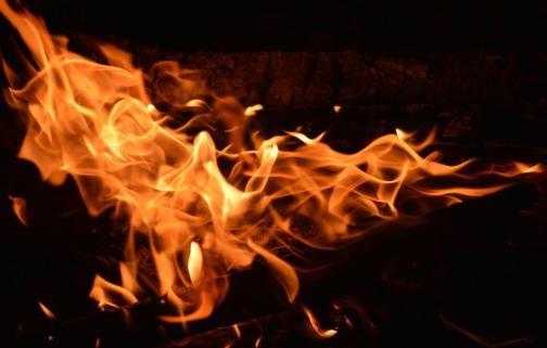 foc 080