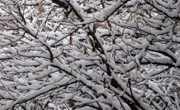 prima zăpadă 02