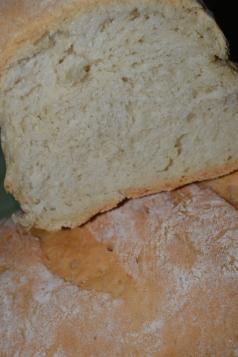 paine alba 2