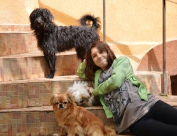 Aglomeraţie mare: Toto, Teea şi moş Bobiţă pe lângă Margot